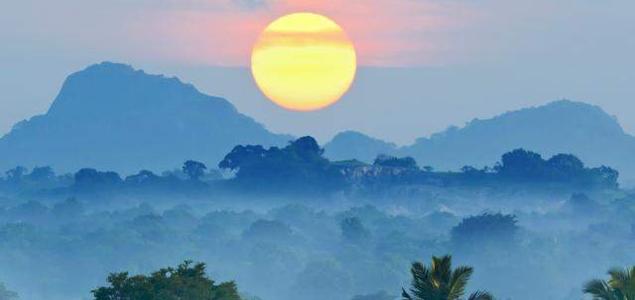 rainforest-alliance_misty-forest-sri-lanka-teaser_635